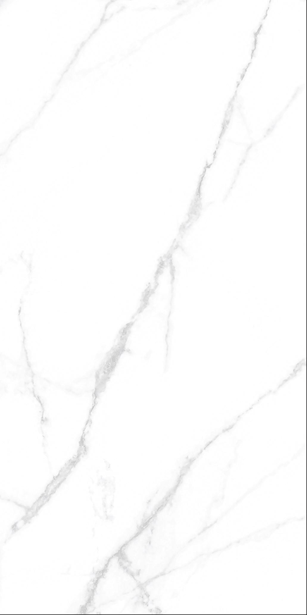 DW9880U (무광)